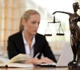 Divorcio Express, Trámites de divorcios