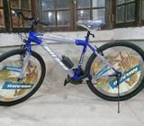 Vendo Bici Milano R.29