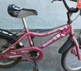 Bicicleta Vairo rodado 16